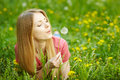 Girl Blowing On A Dandelion Royalty Free Stock Photography - 38902747