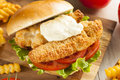 Breaded Fish Sandwich With Tartar Sauce Royalty Free Stock Photography - 38930457
