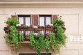 Windows With Flowers In Piazza Navona Stock Image - 38978051