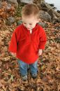 Adorable One Year Old Walking In Leaves Stock Photos - 398363