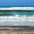 Beautiful Seascape With Foamy Waves, White Bird Stock Images - 39038224