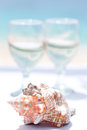Wedding Rings On Seashell And Glass Of Champagne Royalty Free Stock Image - 39064256