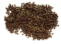 Coffee Beans Royalty Free Stock Photo - 39083435