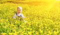 Baby Girl On A Green Meadow With Yellow Flowers Stock Images - 39089294