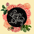 Power Of Spring - Flowers Quote Royalty Free Stock Image - 39100836