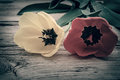 Red And Yellow Tulips On A Rustic Royalty Free Stock Photo - 39104675