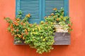 Window With Flowers. Royalty Free Stock Photos - 39129978