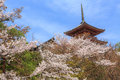 Kiyomizu Temple And Cherry Blossom In Kyoto Royalty Free Stock Image - 39134846