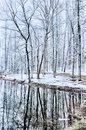 Tree Line Reflections In Lake During Winter Stock Image - 39154841