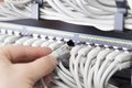 It Technician Plugs In Network Cable Stock Photography - 39178142