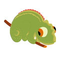 Gecko So Cute Stock Images - 39248274