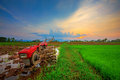 Red Power Tiller In Rice Field Royalty Free Stock Photos - 39385718
