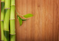 Bamboo Frame Made Of Stems Royalty Free Stock Photos - 39387028