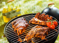 Three Spicy Racks Of Rib Cooking On A BBQ Fire Royalty Free Stock Image - 39391626