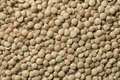 Brown Lentils Royalty Free Stock Photography - 39416287