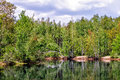 Pond In Forest Royalty Free Stock Photo - 39467645