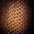 Snake Skin Leather Texture Royalty Free Stock Images - 39483259