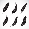 Vector Group Of Feather Royalty Free Stock Photos - 39495538
