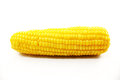 Fresh Corn Royalty Free Stock Image - 39506466