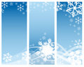 Abstract Curves & Snowflakes Stock Images - 3960324