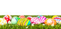 Easter Eggs With Flower On Fresh Green Grass Stock Photos - 39670353