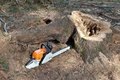 Chainsaw Ready To Work Stock Photos - 39739333