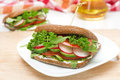 Sandwich With Cottage Cheese, Greens And Vegetables, Horizontal Royalty Free Stock Photography - 39797277