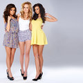Three Sexy Chic Young Women In Summer Fashion Royalty Free Stock Photo - 39817505