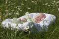 The Baby Lies In A Cradle Royalty Free Stock Photos - 39824598