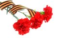 Three Red Carnations Tied With Saint George Ribbon On White Stock Photos - 39825053