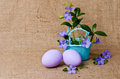 Beautiful Periwinkles In Basket With Easter Eggs Stock Image - 39832561
