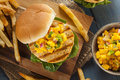 Mahi Fish Sandwich With Salsa Royalty Free Stock Photos - 39849828