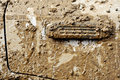 Car Door Covered In Mud Stock Images - 39862784