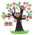 Owl Family Tree Royalty Free Stock Image - 39873146