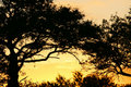African Sunrise Stock Images - 3991654