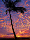 Beach At Sunset Royalty Free Stock Image - 46096