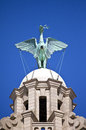 Liver Bird Perched On The Royal Liver Building Royalty Free Stock Photo - 40024365