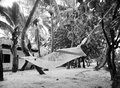 Hammock In The Trees Royalty Free Stock Image - 40024756