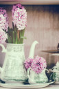 Retro Setting With Pink Hyacinths Royalty Free Stock Photography - 40055347
