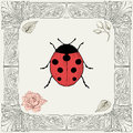 Ladybug And Rose Drawing Stock Photos - 40056693