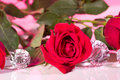 Rose Present With A Surprise Stock Photography - 4012292