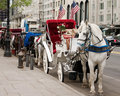 Horse Carriages Stock Image - 4018811