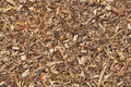 Mulch Bark Seamless Texture Stock Image - 40140761
