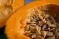 Pumpkin Royalty Free Stock Images - 40148219