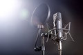 Microphone On Stand Royalty Free Stock Images - 40170589