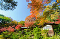 Traditional House In Japanese Garden Stock Photo - 40181320
