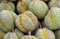 Durian Stock Images - 40259884