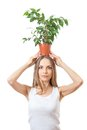 Smiling Woman Hold Houseplant Isolated On White. Royalty Free Stock Image - 40282336