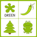 Learning  Green Color. Frog, Green Pea And Fir Tree. Educational Stock Photos - 40324493
