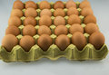 Egg And Egg Tray Stock Photography - 40340712